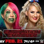 【WWE】ASKAの対戦相手は誰に?レイシーエバンスに妊娠発覚!【エリミネーションチェンバー】