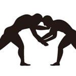 レスリングって五輪競技になるのがアマチュアレスリングで猪木とかがやる興業格闘技をプロレスって言うじゃん?